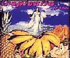 capa tropicalia 30 anos